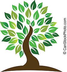 Baum-Logo.
