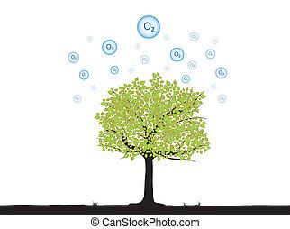 Baum mit Sauerstoff