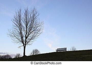 Baum und Bank