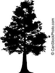Baum (vektor)