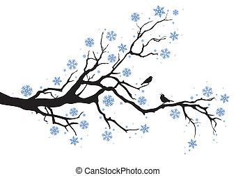 baum winter, zweig