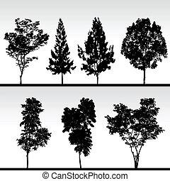 Baumschwarze Silhouette