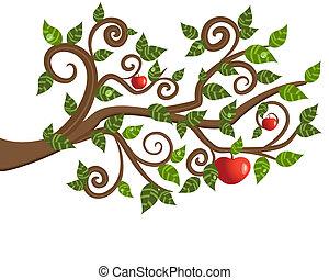 Baumzweig aus einem Apfel