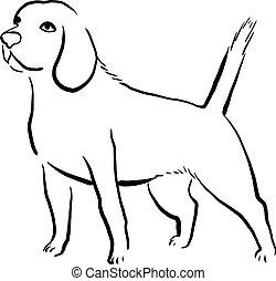 Beagle Dog.