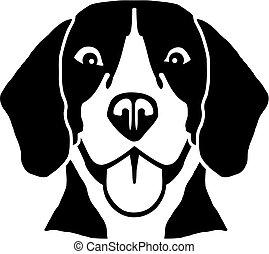 beagle, kopf