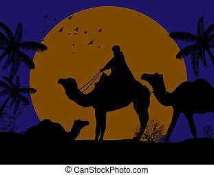 Beduin Kamelkarawane