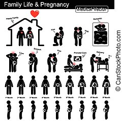 begriff, familie, )(, wachstum, design, schwangerschaft, ), (, freigestellt, schwarz, weißes, entwicklung, wohnung, leben, frau, treten, während, schwanger, wissenschaft, medizin, healthcare, gebã¤rmutter, fötal