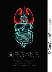 begriff, organ, ikone, raum, farbe, text, mann, idee, abbildung, freigestellt, dunkel, satz, hintergrund, lunge, infektion, röntgenaufnahme, kopie, organe, rotes , glühen