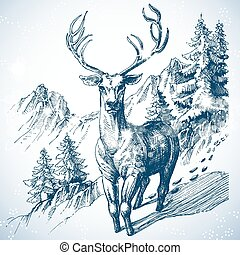 berg, skizze, hirsch, baum, kiefernwald