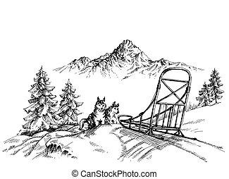 berglandschaft, winter, heiser, hunden, rodeln
