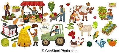 berries., früchte, arbeit, verkaufen, lokal, ernten, essen., tiere, melkt, kuh, versammlung, freigestellt, vektor, pflückend, set., produktion, gemuese, bauernhof, landwirte, organische , pflanzen, illustration., heiligenbilder, frau, landwirtschaftlich