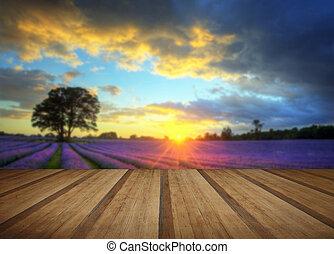 Bezaubernder Sonnenuntergang über pulsierende Lavendelfelder im Sommer mit Holzplankenböden.