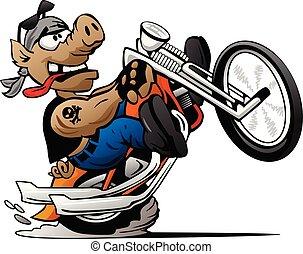 Biker hog knallt einen Radie auf einer Motorrad-Cartoon-Vektorgrafik.