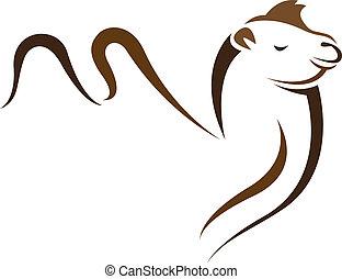 Bild eines Kamels