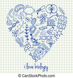 Biologiezeichnungen in Herzform
