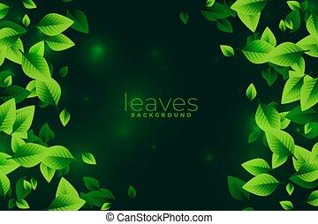 blätter, grüner hintergrund, begriff, eco, design