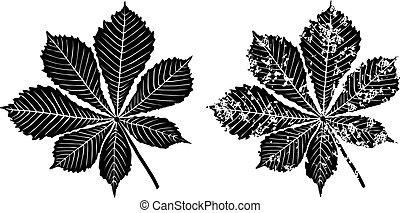 Blätter von Kastanienbaum.