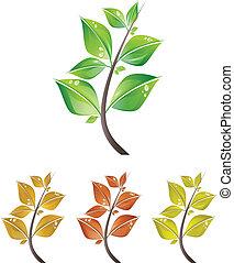 Blätterzweige