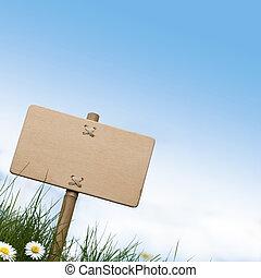 Blankes Holzzeichen und grünes Gras mit Gänseblümchenblumen, blauer Himmel und Raum für Text an der Spitze