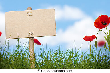 Blankes Holzzeichen und grünes Gras mit Mohnblumen, blauer Himmel und verschwommene Wolken, Raum für Text