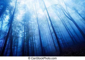 Blaue Dämmerung in einem Nebelwald.