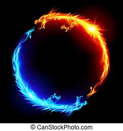 Blaue und rote Feuerdrachen