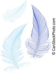Blaue Vogelfedern, Vektor.