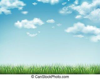Blauer Himmel und grünes Gras.
