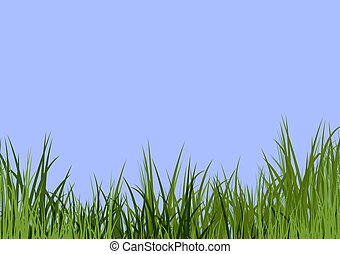 Blauer Himmel und Gras