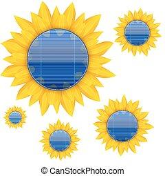 blaues, elektrisch, sunflower., hintergrund, vektor, solarmodul