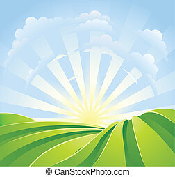 blaues, idyllisch, felder, sonnenschein, himmelsgewölbe, strahlen, grün