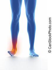 blaues, sprained, weißes, freigestellt, knöchel