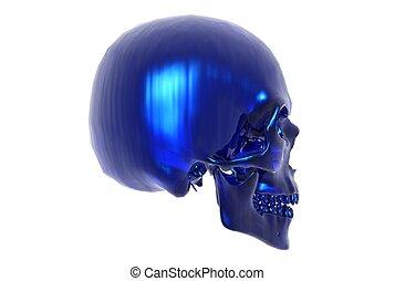 blaues, totenschädel, -, glas, seitenansicht