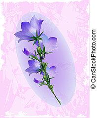 Bluebell. Design für Albumcover