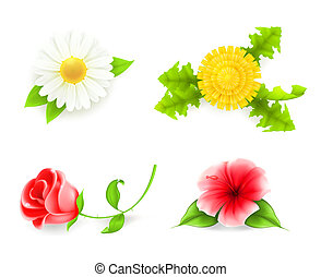 Blumen bereit, 10eps