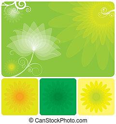 blumen-, grüner hintergrund