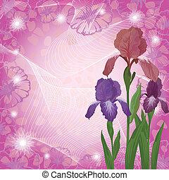 Blumen Iris und ipomoea Konturen