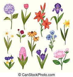 Blumen und Blumenvevektor-Vektor-Wasserfarben Blumen Grußkarte Einladung für Hochzeit Geburtstag blühende Hydrangea Iris Frühling setzen Illustration isoliert auf weißem Hintergrund.