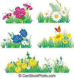 Blumen und Gras