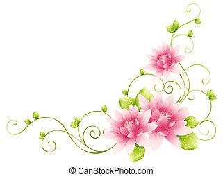 Blumen und Reben