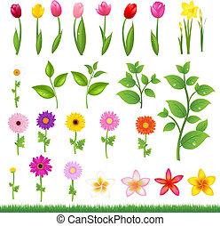 Blumengrenzen - 8