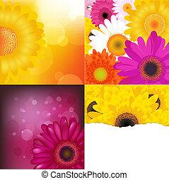 Blumenhintergrund gesetzt