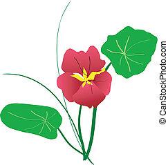 Blumenkomposition