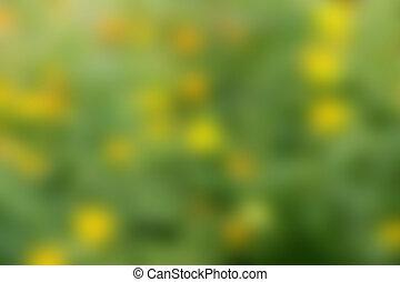Blurry Hintergrund.