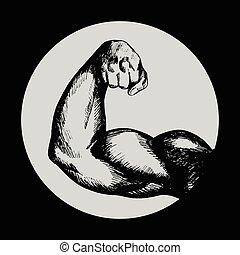 bodybuilder, bizeps