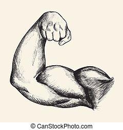 Bodybuilder Bizeps.