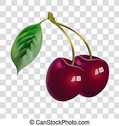 Botany, Obst. Gesundheit und Schönheit.