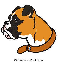Boxer Hundekopf.