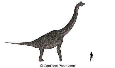 brachiosaurus, vergleich, größe