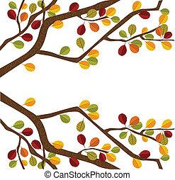 Branch des Herbstbaums